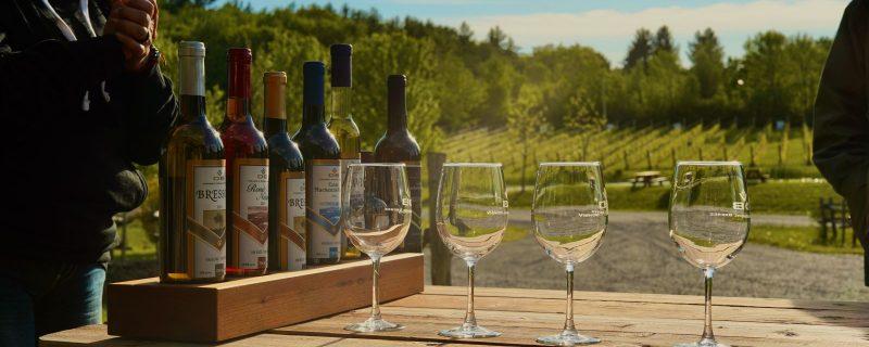 4 suggestions de vins à acheter pour la «journée du vin québécois»